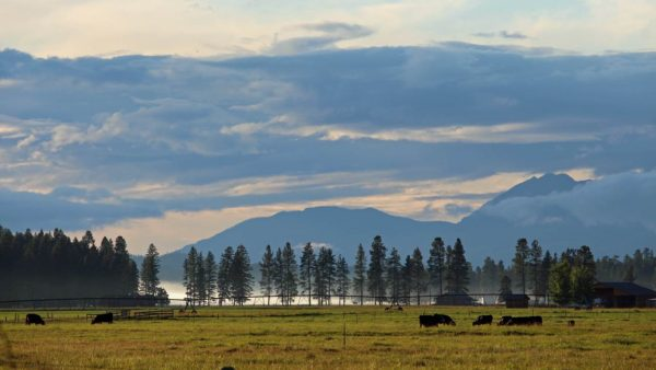 View-of-the-Whitefish-Mountains-in-Montana